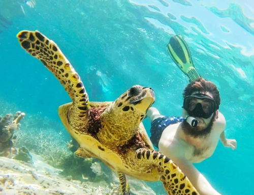 Snorkelling in Madagascar – Tanikely Marine Reserve