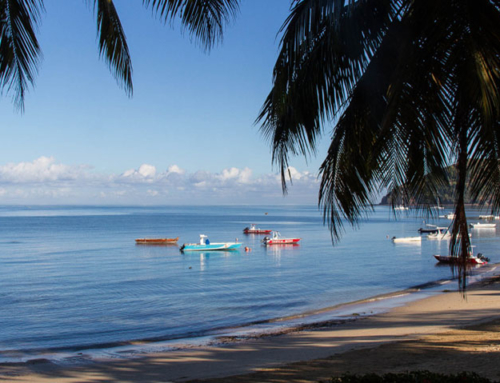 Planning a holiday in Madagascar soon?
