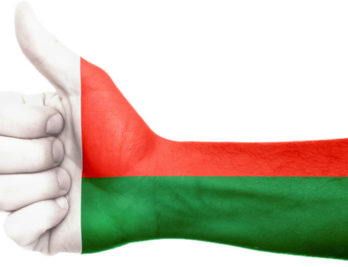 MADAGASCAR: BEST OF 2017