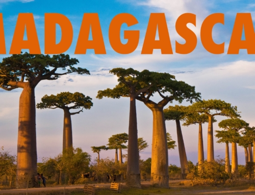Madagascar: Holidays & Events for 2018