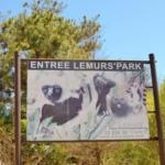 Explore Madagascar Lumur Park